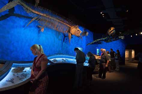 Interactive Museum Exhibit Technology