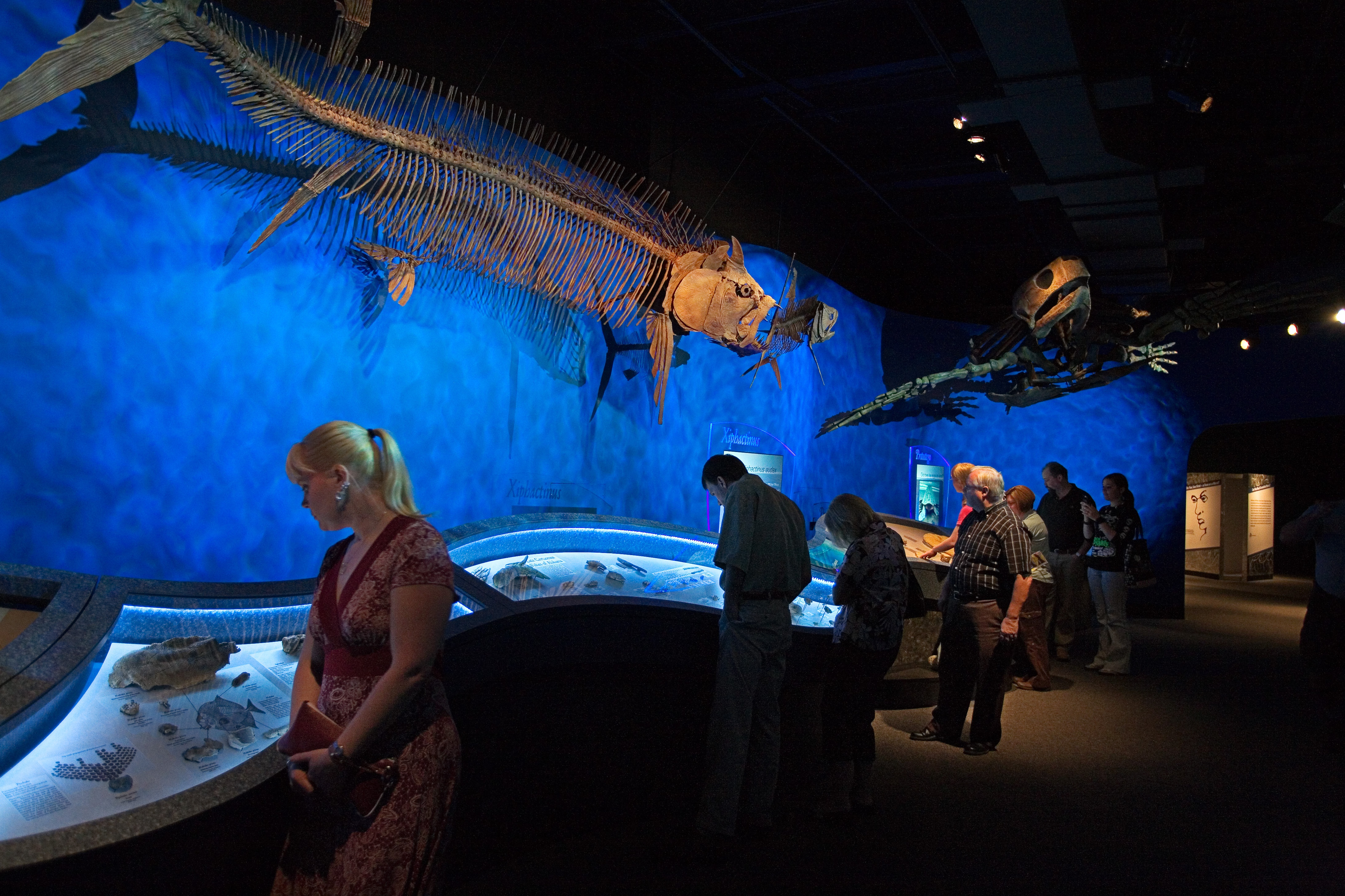 Museum Exhibit Design and Installation Project - McWane Science Center
